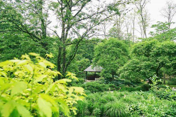 ピクチャレスク・ガーデン(ムーゼの森)