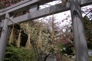 修那羅山 安宮神社