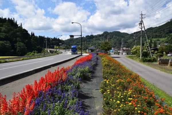 オリンピック道路沿線(小川村)