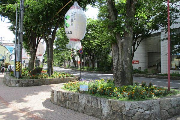ケヤキ並木通り(植樹桝)